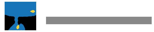 Siltech Corporation Logo